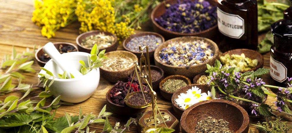 The Positive Impact of Herbs and Flowers on your Health and Well-Being