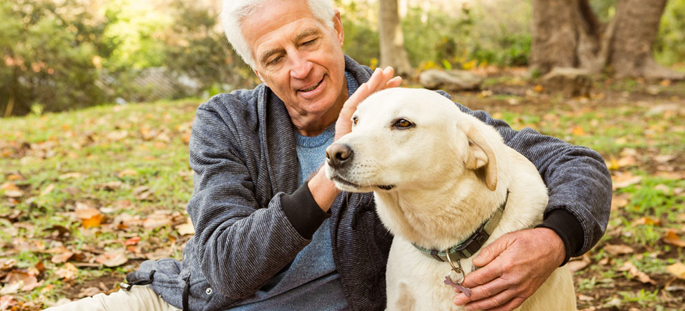 5 Benefits of Older People having Pets