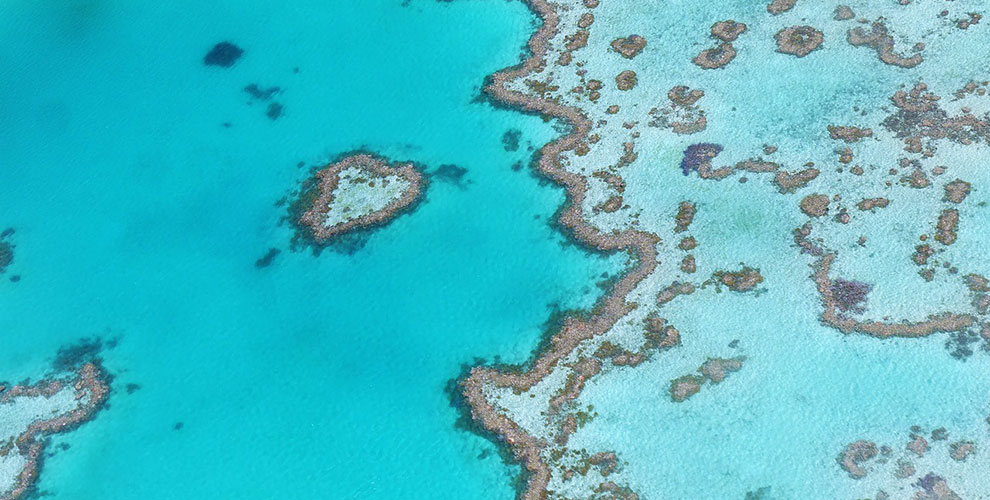 Travelling - Great Barrier Reef